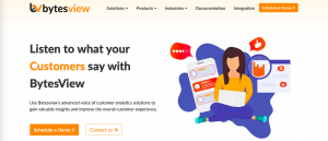 BytesView Voice of customers solution